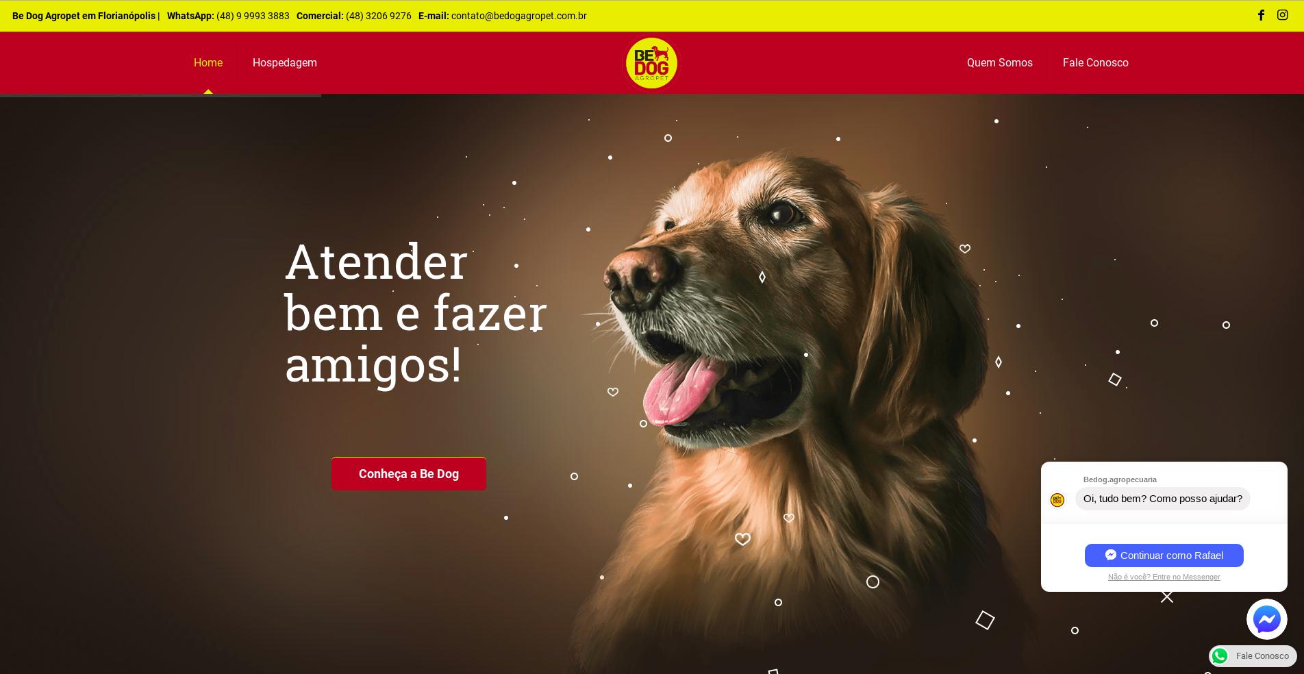 Desenvolvi Desenvolvimento Web be Dog Agropet Florianópolis Campeche
