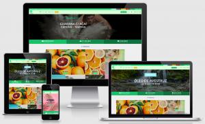 Desenvolvi Desenvolvimento Web BioSupri Produtos Naturais